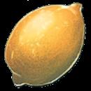 ARKレモン
